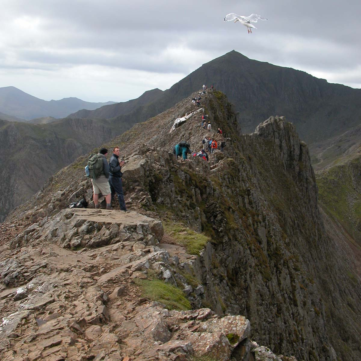 Welsh 3000 Guided Walk Mountain Challenge